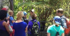 come diventare guida turistica